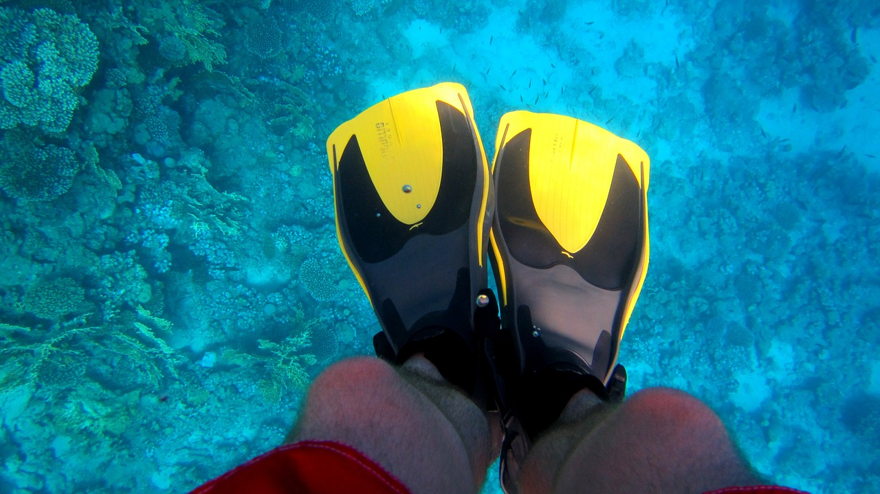 How to start a travel blog - underwater scuba feet