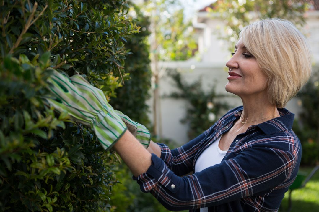Beautiful woman pruning plants in garden on a sunny day