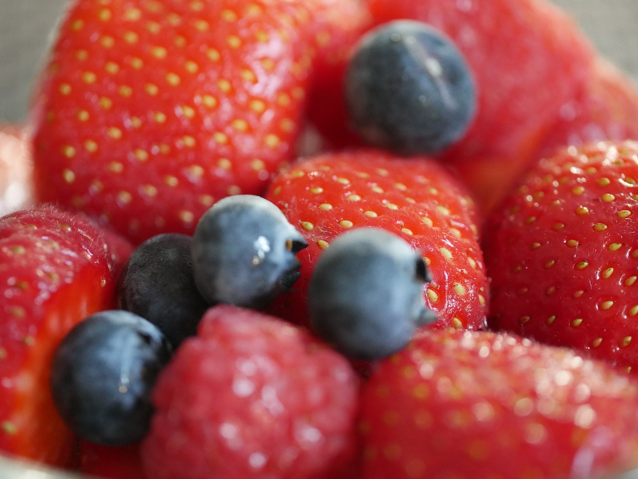 FREE berry Stock Photos from PikWizard