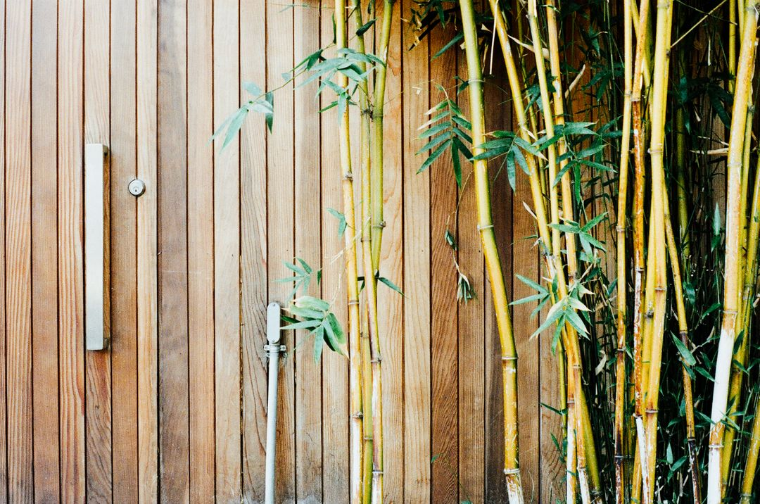Wood bamboo gate
