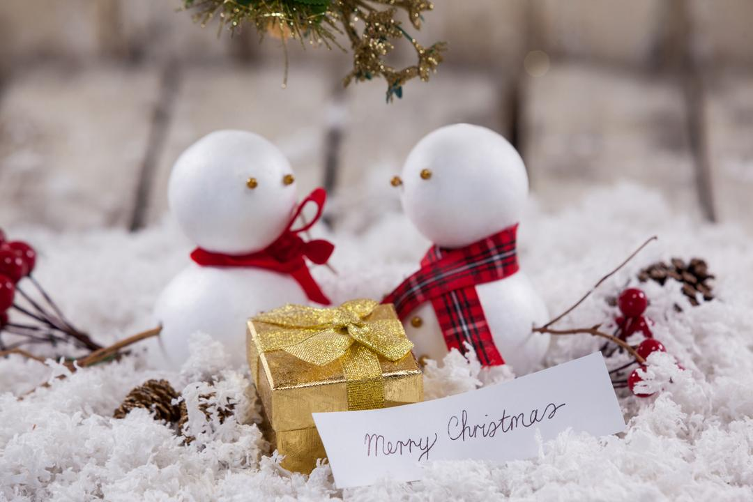 Two snowman with christmas gift and decoration