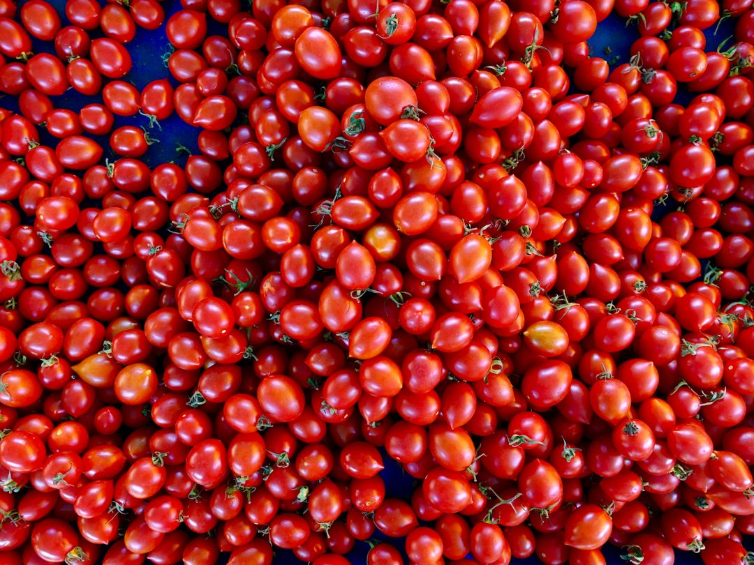 Berry Fruit Food
