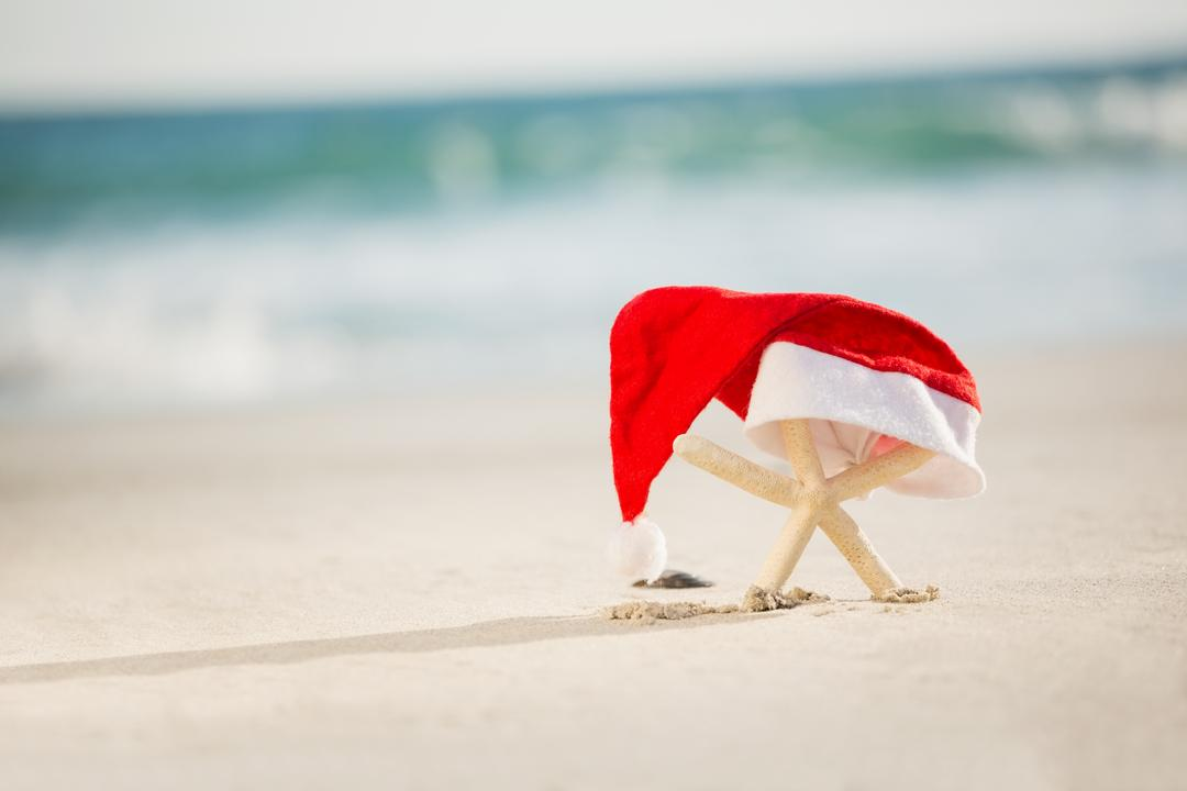 Starfish covered with santa hat kept on sand at beach
