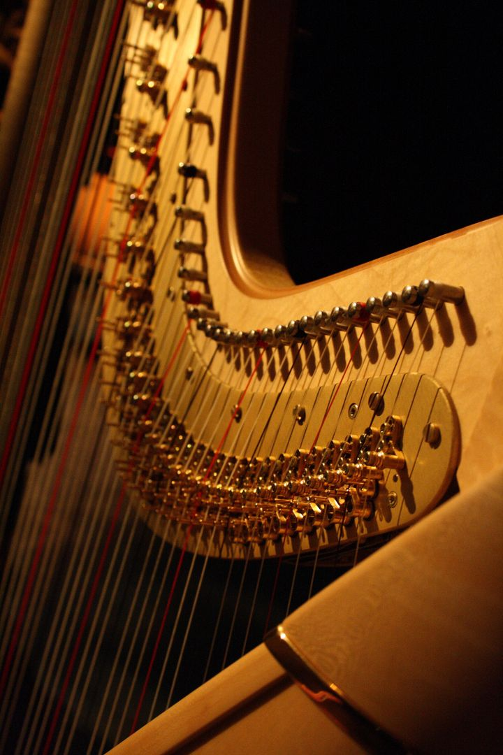 Close Up of Piano