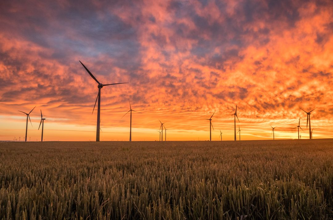 Wind turbines with pink and yellow sunset sky