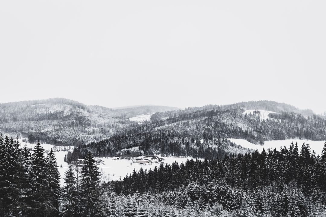 Grayscale Photo of Foggy Covered Forest Mountain