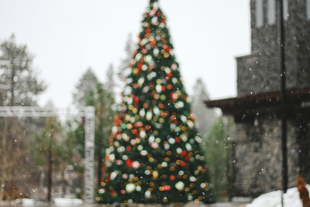 Image of a Christmas Tree in a Public Place