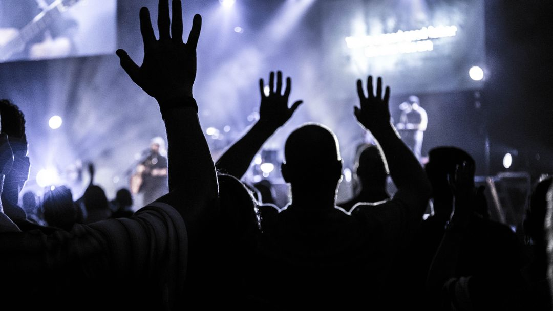 Image of People with Raised Hands at a Concert