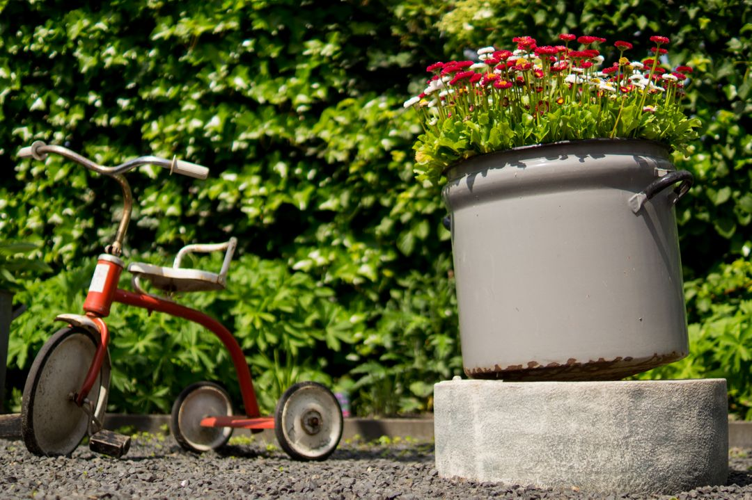 Tricycle pots flowers