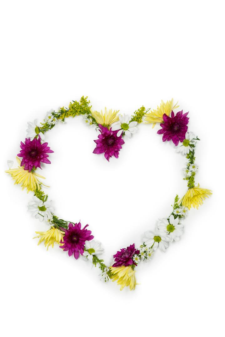 Tropical flower garland arranged in heart shape on white background