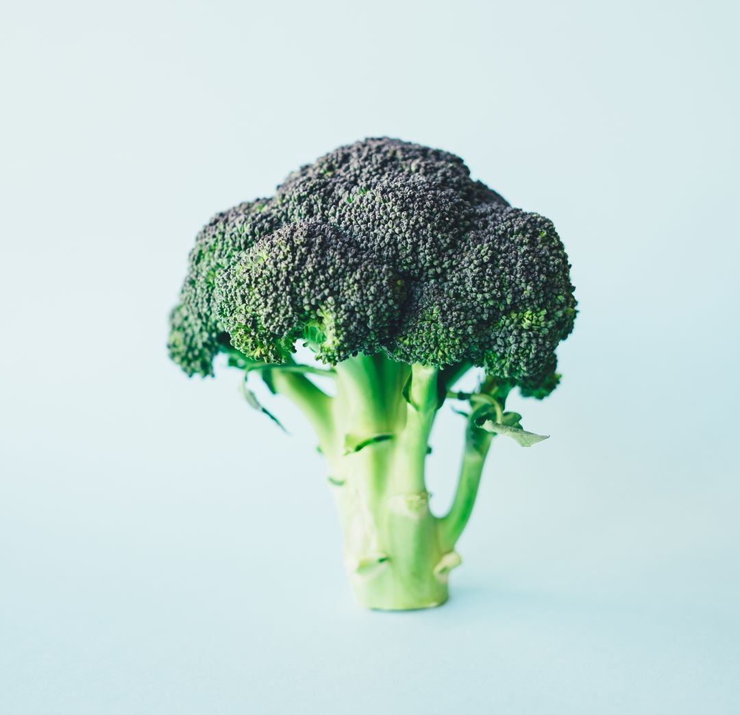 Broccoli Cruciferous vegetable Vegetable