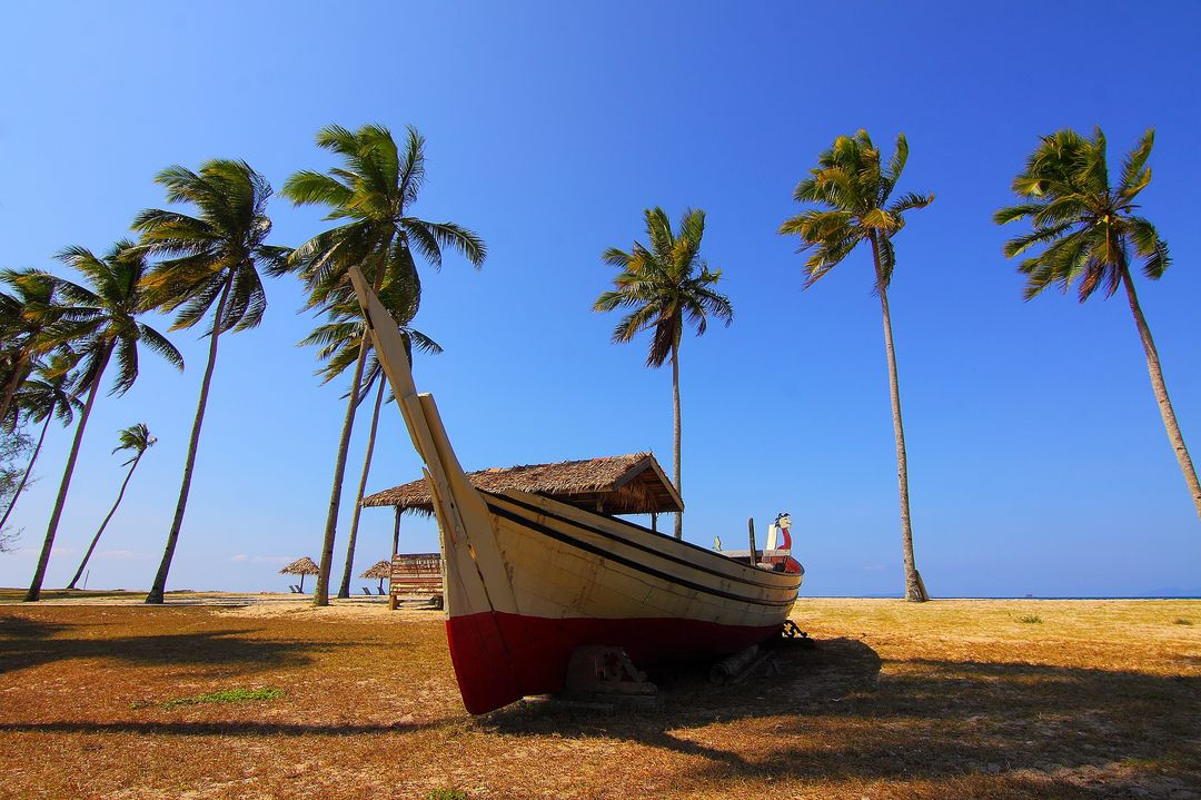 Palm Trees Blue Sky Boat Free Photo