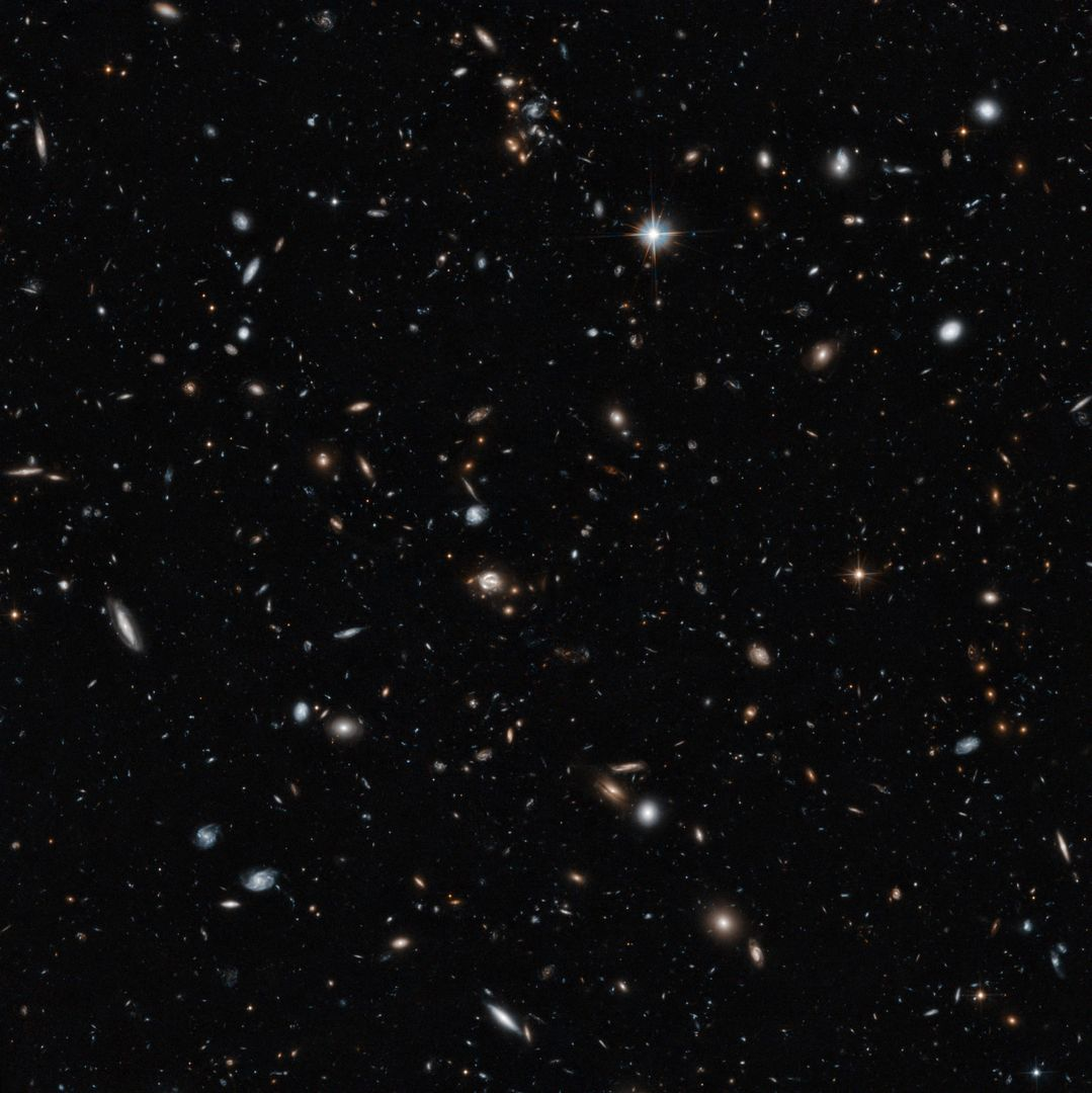 "This new Hubble image showcases a remarkable variety of objects at different distances from us, extending back over halfway to the edge of the observable Universe. The galaxies in this image mostly lie about five billion light-years from Earth but the field also contains other objects, both significantly closer and far more distant.  Studies of this region of the sky have shown that many of the objects that appear to lie close together may actually be billions of light-years apart. This is because several groups of galaxies lie along our line of sight, creating something of an optical illusion. Hubble's cross-section of the Universe is completed by distorted images of galaxies in the very distant background.  These objects are sometimes distorted due to a process called gravitational lensing, an extremely valuable technique in astronomy for studying very distant objects [1]. This lensing is caused by the bending of the space-time continuum by massive galaxies lying close to our line of sight to distant objects.  One of the lens systems visible here is called CLASS B1608+656, which appears as a small loop in the centre of the image. It features two foreground galaxies distorting and amplifying the light of a distant quasar the known as QSO-160913+653228. The light from this bright disc of matter, which is currently falling into a black hole, has taken nine billion years to reach us — two thirds of the age of the Universe.  As well as CLASS B1608+656, astronomers have identified two other gravitational lenses within this image. Two galaxies, dubbed Fred and Ginger by the researchers who studied them, contain enough mass to visibly distort the light from objects behind them. Fred, also known more prosaically as [FMK2006] ACS J160919+6532, lies near the lens galaxies in CLASS B1608+656, while Ginger ([FMK2006] ACS J160910+6532) is markedly closer to us. Despite their different distances from us, both can be seen near to CLASS B1608+656 in the central region of this Hubble image.  To capture distant and dim objects like these, Hubble required a long exposure. The image is made up of visible and infrared observations with a total exposure time of 14 hours.  More info: <a href=""http://www.spacetelescope.org/news/heic1408/"" rel=""nofollow"">www.spacetelescope.org/news/heic1408/</a>  Credit: NASA/ESA/Hubble  <b><a href=""http://www.nasa.gov/audience/formedia/features/MP_Photo_Guidelines.html"" rel=""nofollow"">NASA image use policy.</a></b>  <b><a href=""http://www.nasa.gov/centers/goddard/home/index.html"" rel=""nofollow"">NASA Goddard Space Flight Center</a></b> enables NASA's mission through four scientific endeavors: Earth Science, Heliophysics, Solar System Exploration, and Astrophysics. Goddard plays a leading role in NASA's accomplishments by contributing compelling scientific knowledge to advance the Agency's mission.  <b>Follow us on <a href=""http://twitter.com/NASAGoddardPix"" rel=""nofollow"">Twitter</a></b>  <b>Like us on <a href=""http://www.facebook.com/pages/Greenbelt-MD/NASA-Goddard/395013845897?ref=tsd"" rel=""nofollow"">Facebook</a></b>  <b>Find us on <a href=""http://instagram.com/nasagoddard?vm=grid"" rel=""nofollow"">Instagram</a></b>"