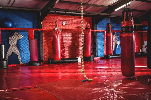 Punching bags and rope in fitness studio