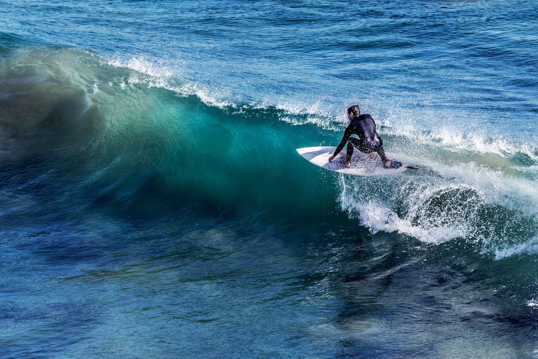 person in a wetsuit on a surfboard surfing on a wave in the sea