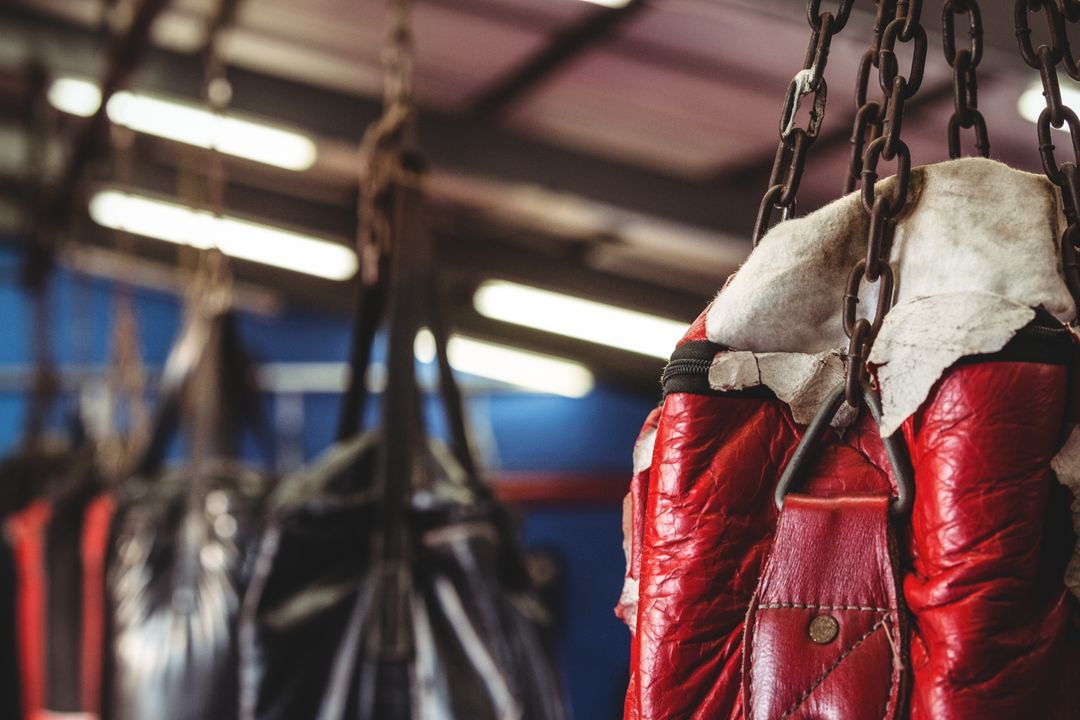 Punching bag hanging in fitness studio Free Stock Images from PikWizard