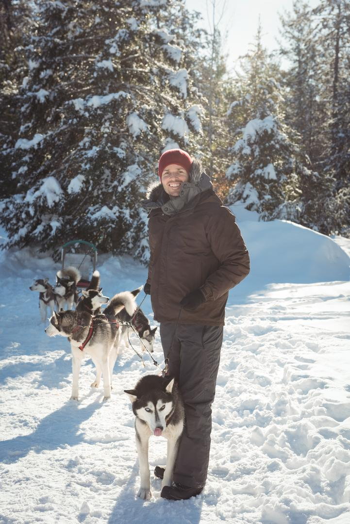 Man standing with group of Siberian husky dogs