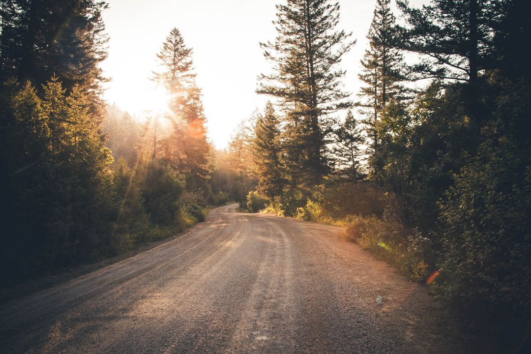 Empty Dirt Road during a Sunrise View