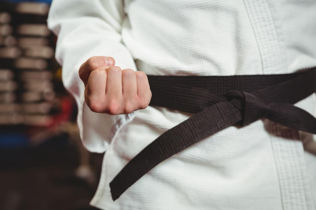 Mid section of karate player performing karate stance in fitness studio