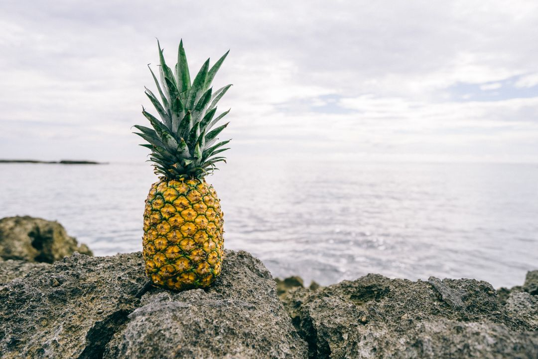 Pineapple Edible fruit Fruit