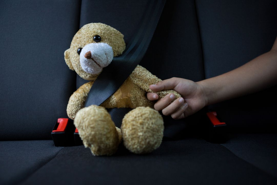 Close-up of teenage girl sitting with teddy bear in the back seat of car Free Stock Images from PikWizard