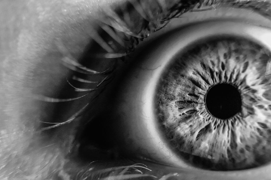Grayscale Photo of Human Eye Free Stock Images from PikWizard