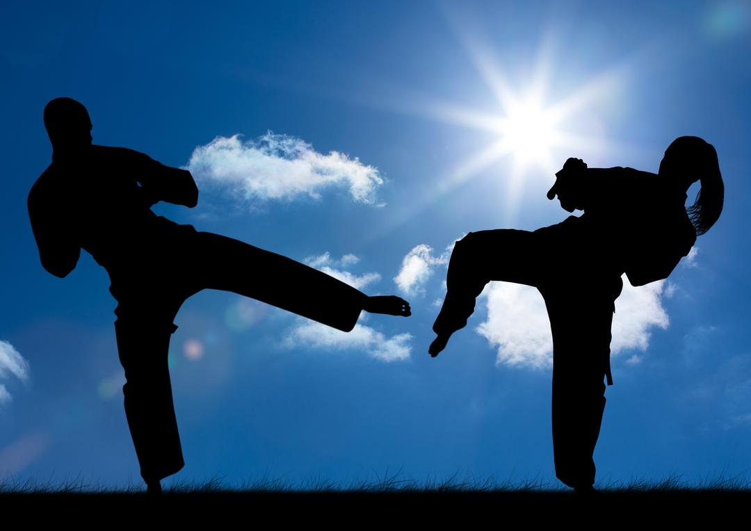 Digital composite image of silhouette athletes practicing karate on a sunny day Free Stock Images from PikWizard