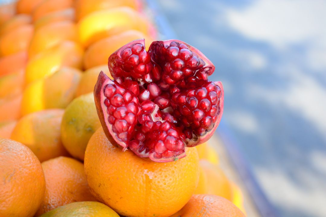 Berry Fruit Pomegranate