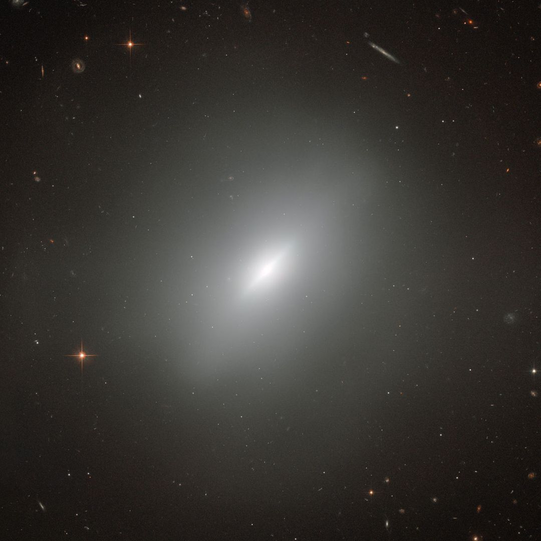 "At the center of this amazing Hubble image is the elliptical galaxy NGC 3610. Surrounding the galaxy are a wealth of other galaxies of all shapes. There are spiral galaxies, galaxies with a bar in their central regions, distorted galaxies and elliptical galaxies, all visible in the background. In fact, almost every bright dot in this image is a galaxy — the few foreground stars are clearly distinguishable due to the diffraction spikes (lines radiating from bright light sources in reflecting telescope images) that overlay their images.  NGC 3610 is of course the most prominent object in this image — and a very interesting one at that! Discovered in 1793 by William Herschel, it was later found that this elliptical galaxy contains a disk. This is very unusual, as disks are one of the main distinguishing features of a spiral galaxy. And the disk in NGC 3610 is remarkably bright.  The reason for the peculiar shape of NGC 3610 stems from its formation history. When galaxies form, they usually resemble our galaxy, the Milky Way, with flat disks and spiral arms where star formation rates are high and which are therefore very bright. An elliptical galaxy is a much more disordered object which results from the merging of two or more disk galaxies. During these violent mergers most of the internal structure of the original galaxies is destroyed. The fact that NGC 3610 still shows some structure in the form of a bright disk implies that it formed only a short time ago. The galaxy's age has been put at around four billion years and it is an important object for studying the early stages of evolution in elliptical galaxies.  Image credit: ESA/Hubble &amp; NASA, Acknowledgement: Judy Schmidt   <b><a href=""http://www.nasa.gov/audience/formedia/features/MP_Photo_Guidelines.html"" rel=""nofollow"">NASA image use policy.</a></b>  <b><a href=""http://www.nasa.gov/centers/goddard/home/index.html"" rel=""nofollow"">NASA Goddard Space Flight Center</a></b> enables NASA's mission through four scientific endeavors: Earth Science, Heliophysics, Solar System Exploration, and Astrophysics. Goddard plays a leading role in NASA's accomplishments by contributing compelling scientific knowledge to advance the Agency's mission.  <b>Follow us on <a href=""http://twitter.com/NASAGoddardPix"" rel=""nofollow"">Twitter</a></b>  <b>Like us on <a href=""http://www.facebook.com/pages/Greenbelt-MD/NASA-Goddard/395013845897?ref=tsd"" rel=""nofollow"">Facebook</a></b>  <b>Find us on <a href=""http://instagrid.me/nasagoddard/?vm=grid"" rel=""nofollow"">Instagram</a></b>"