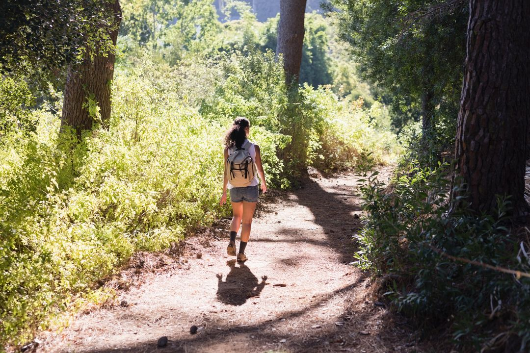 Rear view of young woman hiking on trail amidst plants in forest Free Stock Images from PikWizard