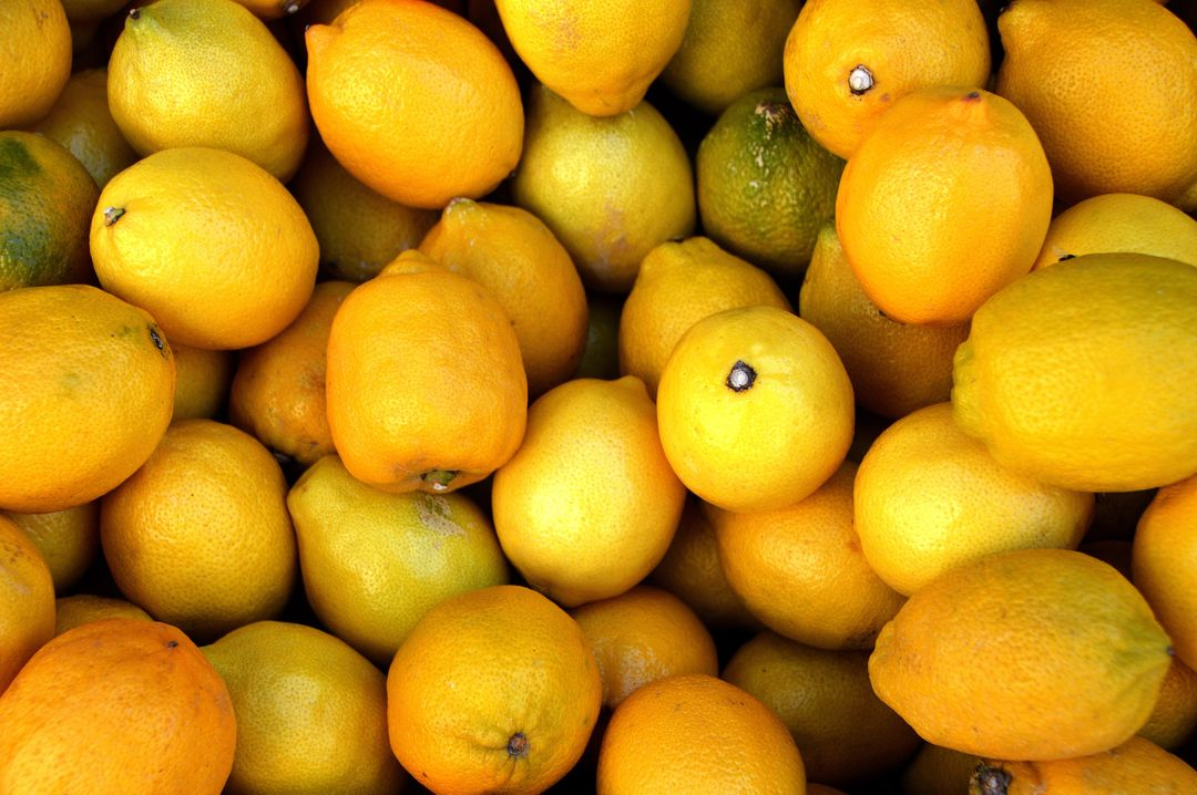 Citrus citrus fruits close up delicious