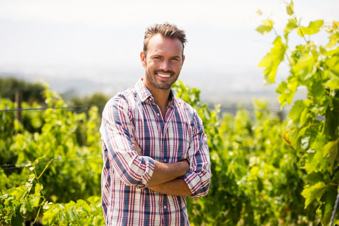 Portrait of smiling man standing at vineyard on sunny day Free Stock Images from PikWizard
