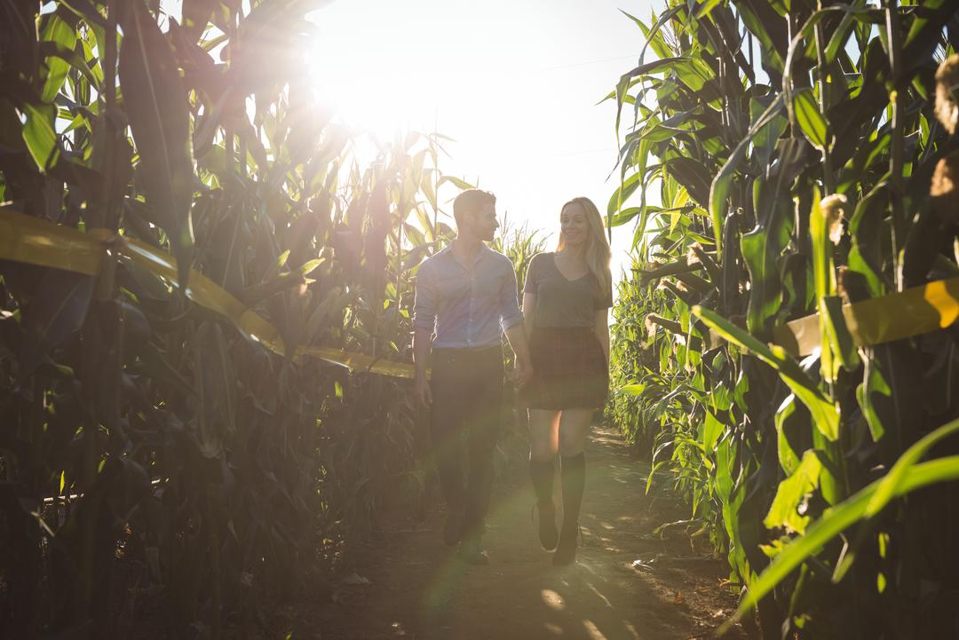 Couple walking in field on a sunny day