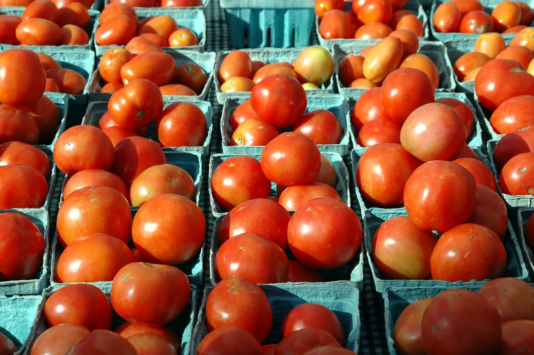 punnets of tomatoes at an outdoor market