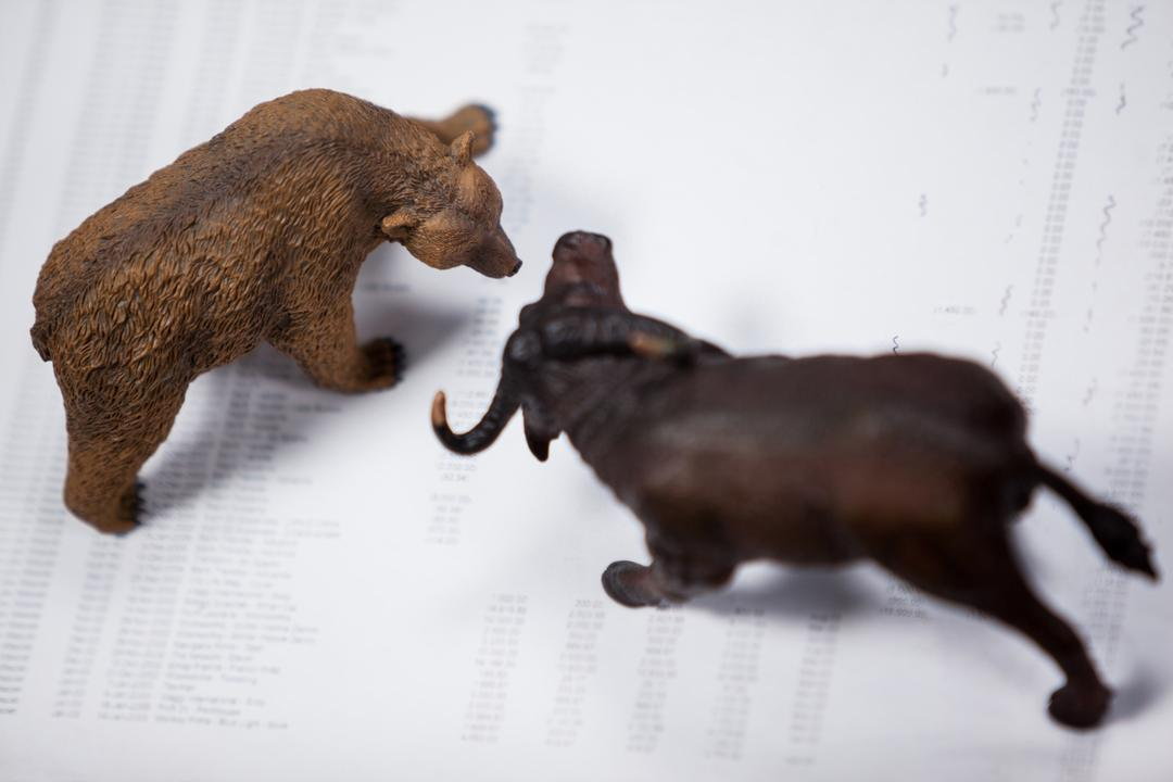 Conceptual image of miniature bear and charging buffalo
