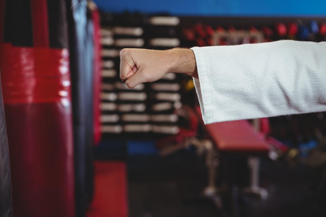 Hand of karate player performing karate stance in fitness studio Free Stock Images from PikWizard