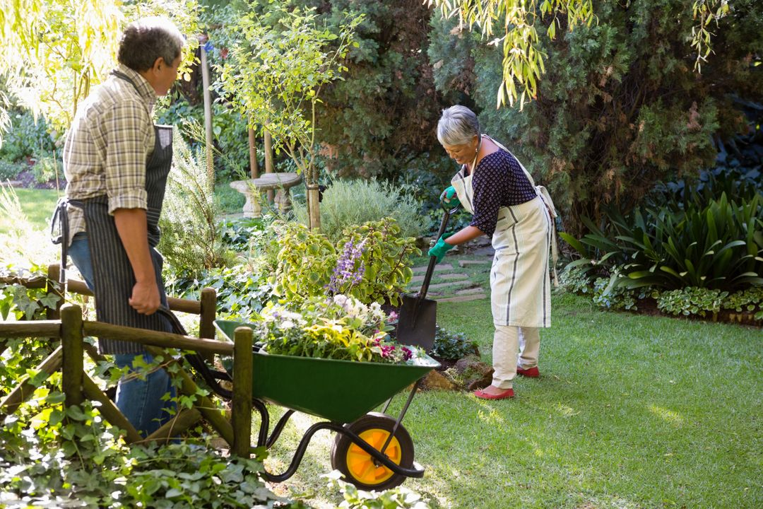 Senior couple gardening in the garden on a sunny day