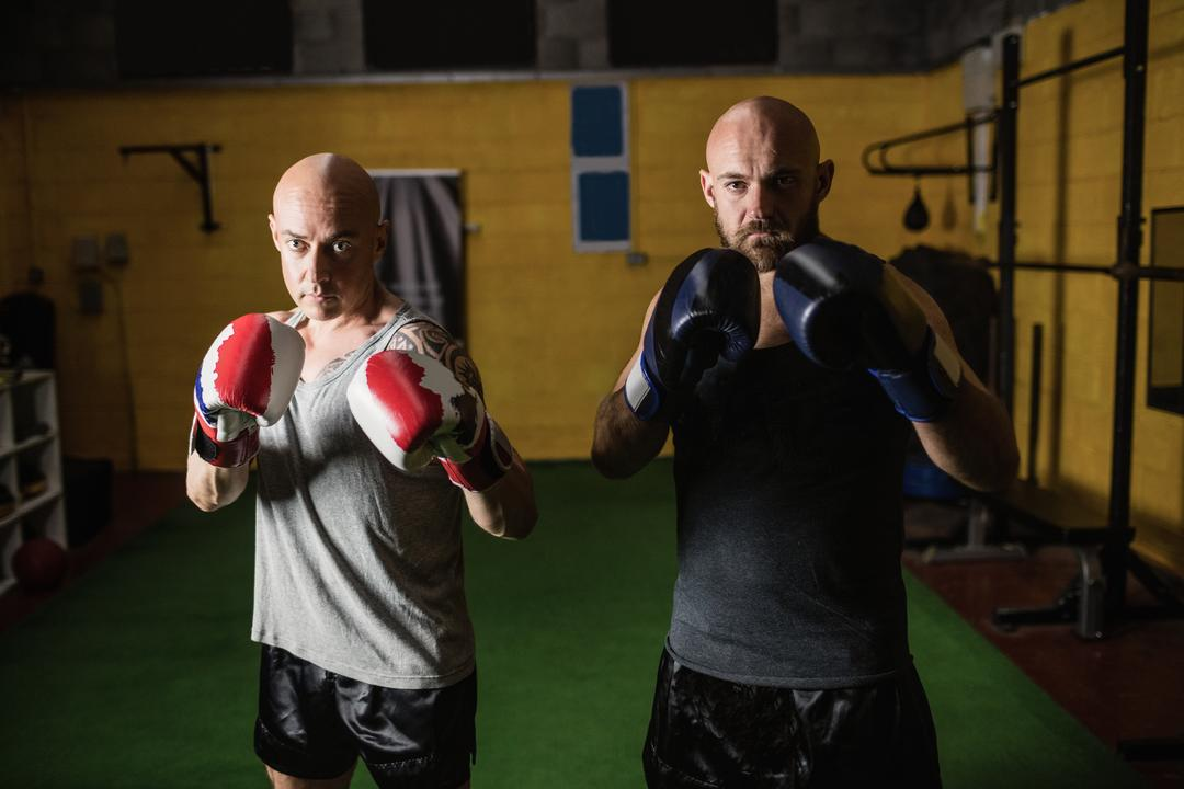 Portrait of two boxer standing in fitness studio Free Stock Images from PikWizard
