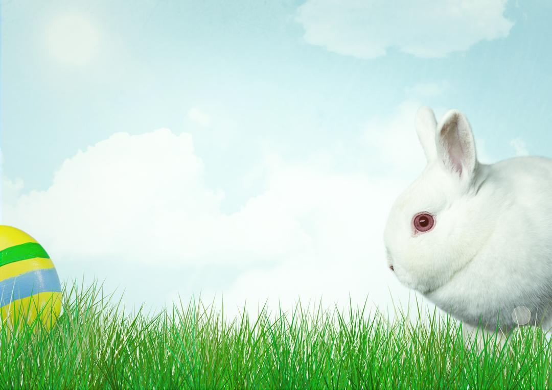 Digital composite of White rabbit with colors egg. Happy Easter. Free Stock Images from PikWizard