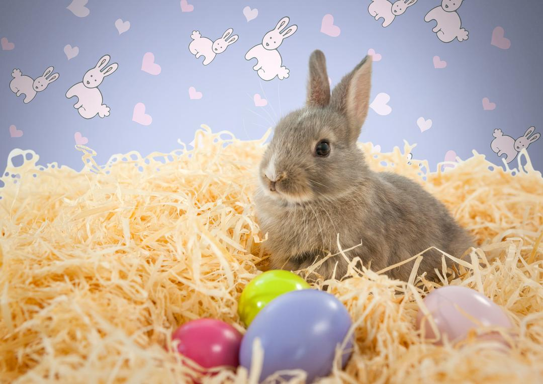 Digital composite of Easter rabbit in front of pattern