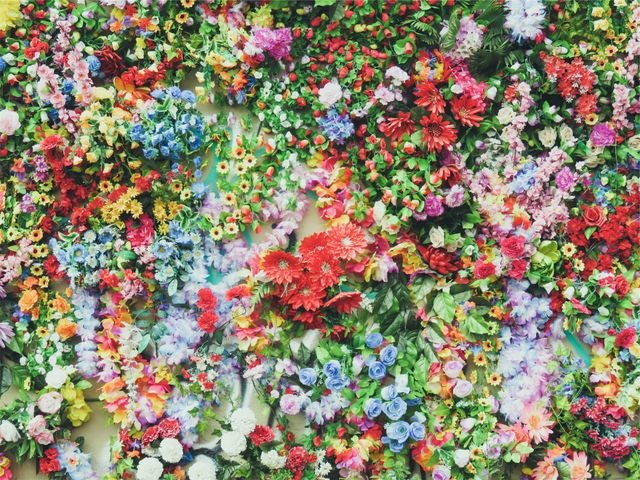 Flowers Colors