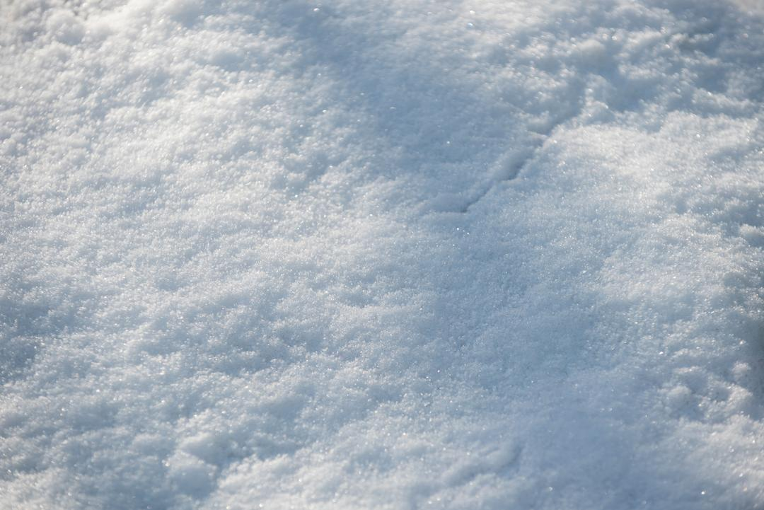 Close-up of white frozen snow