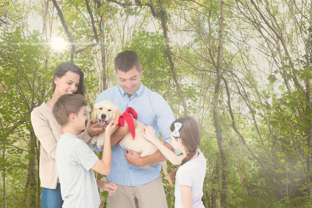 Digital composite of Happy family playing with dog in forest during summer Free Stock Images from PikWizard