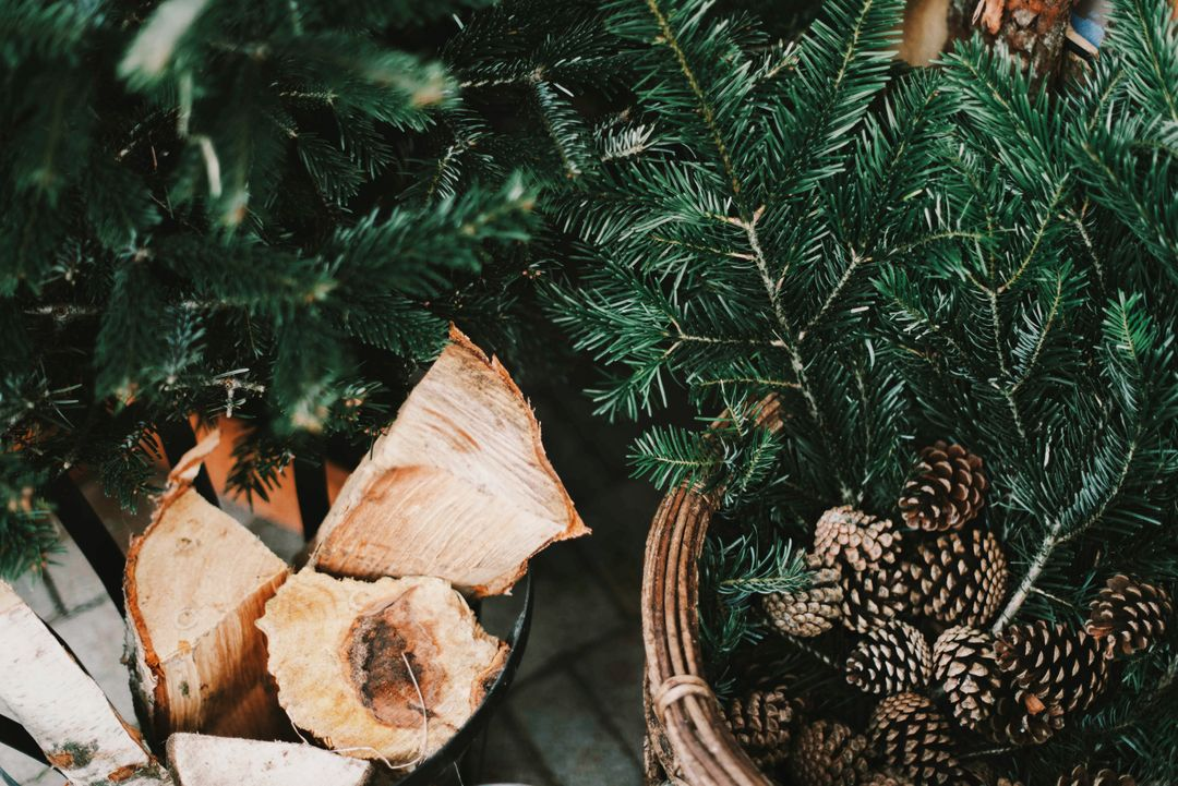 Acorns basket christmas time conifers