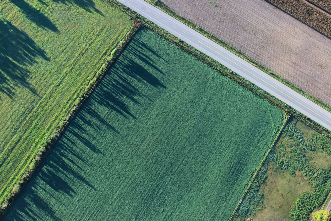 Aerial image of green fields