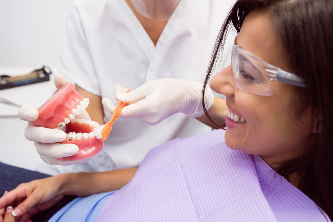 Dentist showing model teeth to female patient in dental clinic