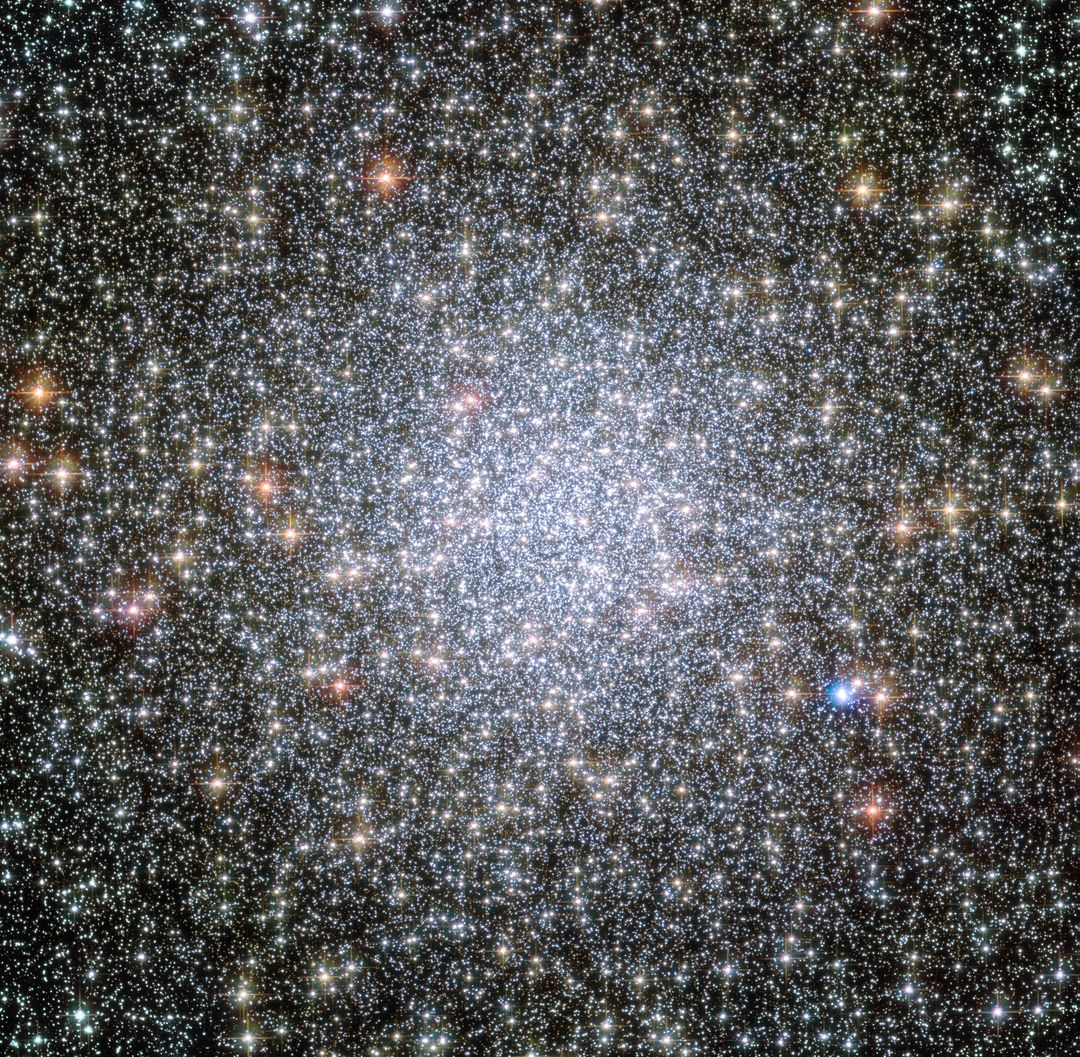 "Using NASA's Hubble Space Telescope, astronomers have captured for the first time snapshots of fledging white dwarf stars beginning their slow-paced, 40-million-year migration from the crowded center of an ancient star cluster to the less populated suburbs.  White dwarfs are the burned-out relics of stars that rapidly lose mass, cool down and shut off their nuclear furnaces. As these glowing carcasses age and shed weight, their orbits begin to expand outward from the star cluster's packed downtown. This migration is caused by a gravitational tussle among stars inside the cluster. Globular star clusters sort out stars according to their mass, governed by a gravitational billiard ball game where lower mass stars rob momentum from more massive stars. The result is that heavier stars slow down and sink to the cluster's core, while lighter stars pick up speed and move across the cluster to the edge. This process is known as ""mass segregation."" Until these Hubble observations, astronomers had never definitively seen the dynamical conveyor belt in action.  Astronomers used Hubble to watch the white-dwarf exodus in the globular star cluster 47 Tucanae, a dense swarm of hundreds of thousands of stars in our Milky Way galaxy. The cluster resides 16,700 light-years away in the southern constellation Tucana.  Credits: NASA, ESA, and H. Richer and J. Heyl (University of British Columbia, Vancouver, Canada); acknowledgement: J. Mack (STScI) and G. Piotto (University of Padova, Italy)"