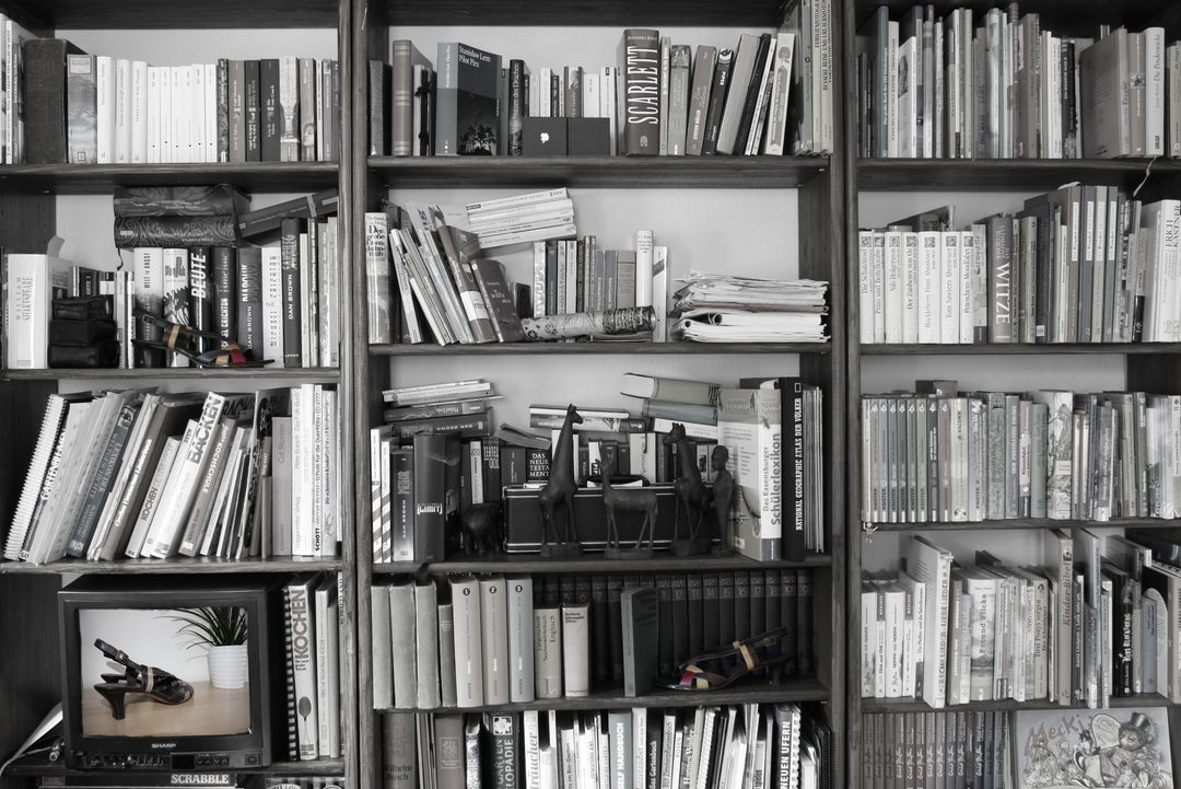 Black and white book book shelf bookcase