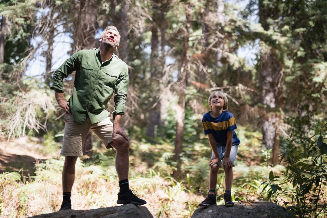 Full length of curious father and son looking up while standing on rocks in forest Free Stock Images from PikWizard