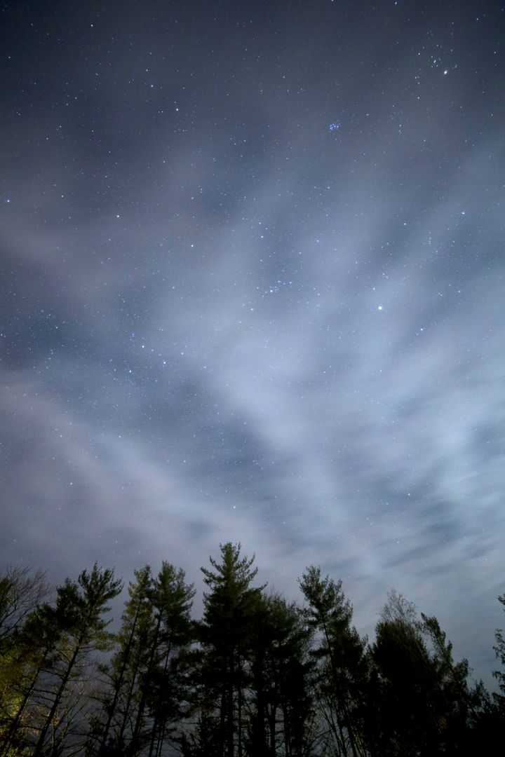Night clouds trees stars
